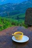 Kaffee auf Hügel Stockbild