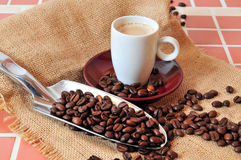 Kaffee Espresso Cup Stock Images