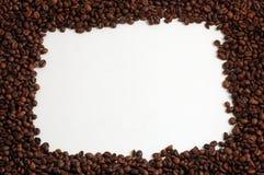 Kaffee-Feld Stockfotos