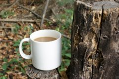 Kaffee im Wald Stockbild