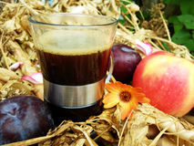 Kaffee mit Autumn Fruit lizenzfreies stockbild