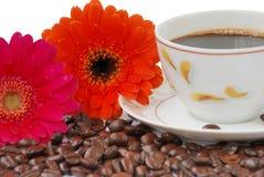 Kaffee mit gerbers Lizenzfreies Stockbild