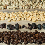 Kaffee mit vier Vielzahl Stockbild