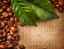 Kaffee-Randauslegung Stockfotos