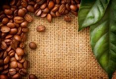 Kaffee-Randauslegung Lizenzfreie Stockfotografie