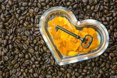 Kaffee-Schlüssel auf orange Ringelblumen-Blumenblättern stockfotografie