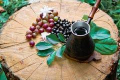 Kaffee, Schwarze Johannisbeere, Stachelbeere Stockfotos