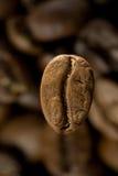 Kaffeebohne über anderen Bohnen Stockbild