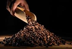 Kaffeebohne Stockbilder