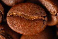 Kaffeebohne Lizenzfreie Stockbilder