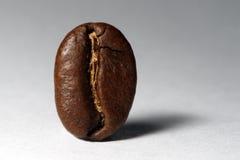 Kaffeebohne Stockbild