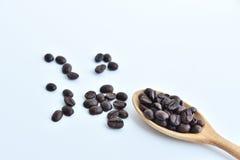 Kaffeebohne auf hölzernem Löffel und auf weißem Hintergrund Stockfoto