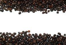Kaffeebohne-Feld Stockfotos