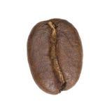 Kaffeebohne getrennt lizenzfreies stockbild