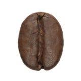 Kaffeebohne getrennt lizenzfreie stockfotografie