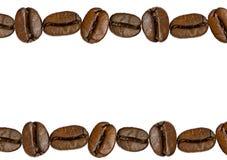 Kaffeebohne getrennt stockfoto