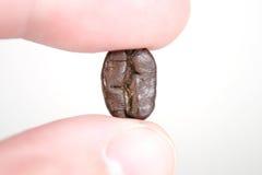 Kaffeebohne zwischen weißen Fingern Stockbild