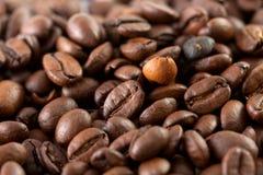 Kaffeebohneabschluß oben Stockfoto