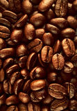 Kaffeebohnebeschaffenheit Lizenzfreie Stockbilder