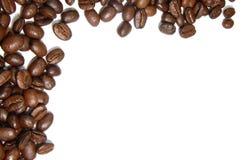 Kaffeebohnefeld Lizenzfreies Stockbild