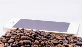 Kaffeebohneisolat lizenzfreie stockfotografie