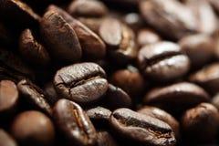 Kaffeebohnen. lizenzfreie stockfotografie