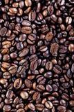Kaffeebohnen Stockbilder