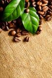 Kaffeebohnen Stockbild