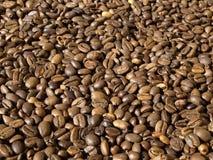 Kaffeebohnen Royalty-vrije Stock Afbeeldingen