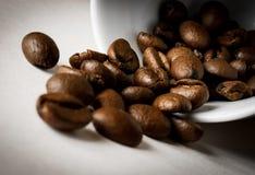 Kaffeebohnen Lizenzfreie Stockfotos