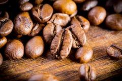 Kaffeebohnen. Stockbild
