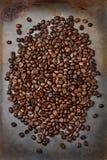 Kaffeebohnen auf Backblech Stockbilder