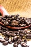 Kaffeebohnen auf dem Rausschmiß und hölzernem Löffel Lizenzfreies Stockbild