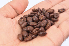 Kaffeebohnen auf der Hand Stockfotos