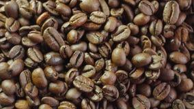 Kaffeebohnen auf drehender Standnahaufnahme stock footage