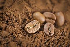 Kaffeebohnen auf einem geerdeten Kaffee lizenzfreies stockfoto