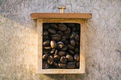 Kaffeebohnen auf einem schönen hellen Hintergrund, in einem Kasten von unterhalb des Schleifers Stockbild