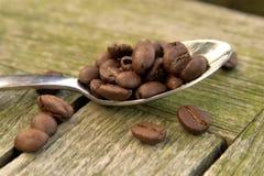 Kaffeebohnen auf Löffel 01 Lizenzfreie Stockfotografie