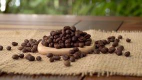 Kaffeebohnen auf Leinwand stock video footage