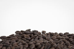 Kaffeebohnen auf weißem Hintergrundbereich für Kopienraum Lizenzfreies Stockbild