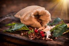 Kaffeebohnen, Blumen und Beeren auf Holztisch Lizenzfreie Stockfotografie