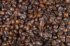 Kaffeebohnen brieten Lebensmittel stockbild