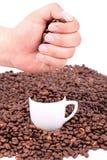 Kaffeebohnen in der Hand über Cup mit Kaffeebohnen Stockfoto