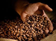 Kaffeebohnen in der Hand auf dunklem Hintergrund Stockfotografie