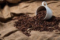 Kaffeebohnen in der Kaffeetasse Lizenzfreies Stockfoto