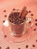 Kaffeebohnen in einem Glascup mit Zimt Stockbild