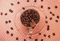 Kaffeebohnen in einem Glascup mit Zimt Lizenzfreies Stockbild