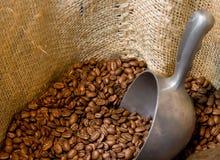 Kaffeebohnen in einer geöffneten Leinwand Lizenzfreie Stockfotos