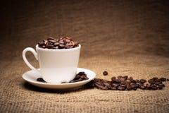 Kaffeebohnen im Cup Lizenzfreie Stockbilder
