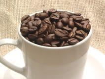 Kaffeebohnen im Cup Stockfotos